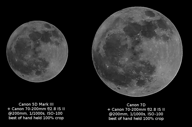 Canon 5D Mark III vs 7D