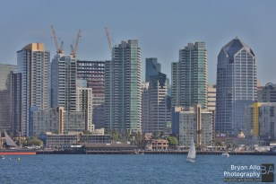 A frame of the San Diego Skyline